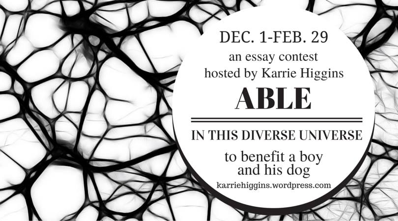 Dec.1-Feb. 29 an essay contest hosted by Karrie Higgins Able in this Diverse Universe to benefit a boy and his dog. These words appear in a white bubble against a background of white with a black web-like pattern.
