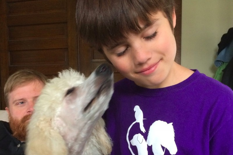 A white, fluffy poodle dog licks a young boy's ear. The boy is wearing a purple shirt with a bird, dog, and horse silhouette on it in white. Behind them, a man watches on happily. The dog is Appa, and the boy is Noah!